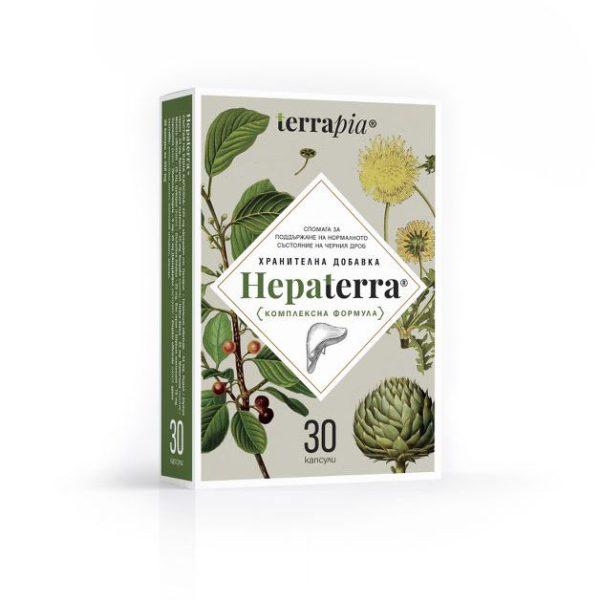 Hepaterra